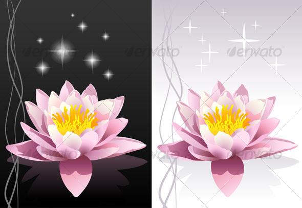 Lotus flowers - Health/Medicine Conceptual