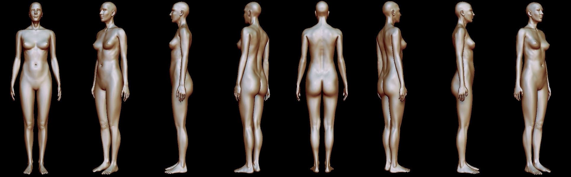 Woman Body Anatomy By Gadamm 3docean