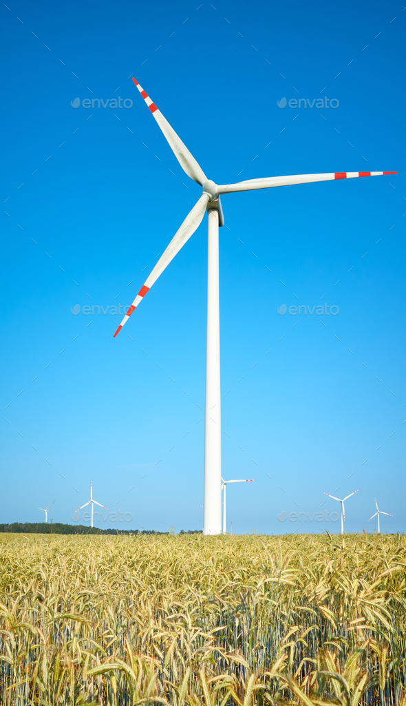Windmills on a crop field on a beautiful summer day. - Stock Photo - Images