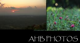 AHB Photos