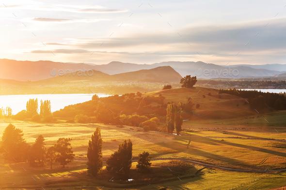 New Zealand hills - Stock Photo - Images