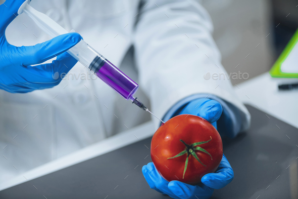 Genetically modified food. - Stock Photo - Images