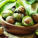 Walnuts in a green shell - PhotoDune Item for Sale