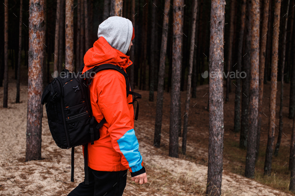 Walking in the forest - Stock Photo - Images