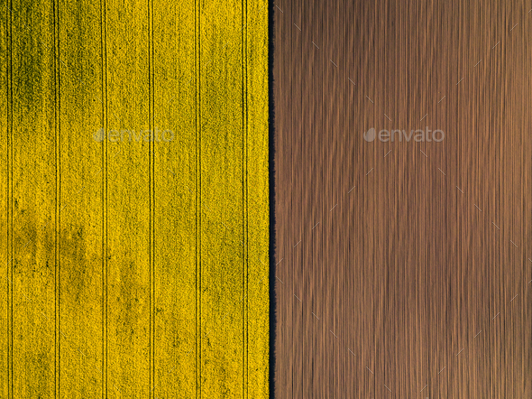 Natural yellow and brown flat background. Drone perspective. - Stock Photo - Images