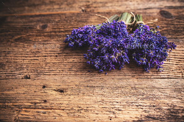 Fresh flowers of lavender - Stock Photo - Images