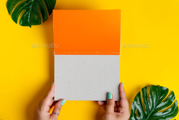 Female's hands are holding empty mockup duotone white orange brochure with leaf - Stock Photo - Images