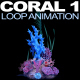 Coral 1 - VideoHive Item for Sale