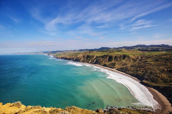 New Zealand coast - Stock Photo - Images