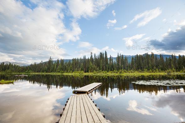 Summer lake - Stock Photo - Images