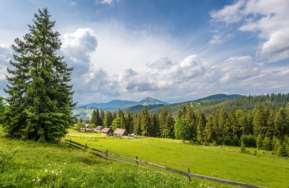 Bewitching beautiful summer landscape of green meadows - Stock Photo - Images