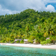Bamboo Huts on the Beach, Coral Reef of an Homestay Gam Island, West Papuan, Raja Ampat, Indonesia - PhotoDune Item for Sale