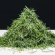Pile of green Shore pine tree needles, on a white surface. - PhotoDune Item for Sale