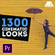 LUTs Color Presets Pack | Cinematic Looks - Premiere Pro
