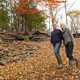 A couple, man and woman on a day out in autumn walking through fallen leaves. Holding hands. - PhotoDune Item for Sale