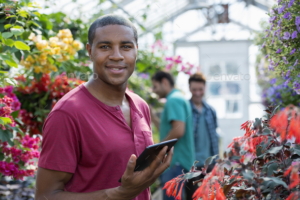 Commercial organic plant nursery growing organic flowers. Man working,using a digital tablet - Stock Photo - Images