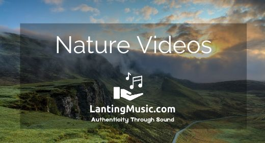Music for Nature Videos