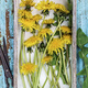 Picked dandelions flowers in box - PhotoDune Item for Sale