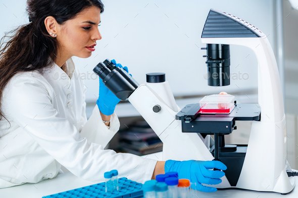 Female Student in Laboratory, Placing Culture Flask on the Microscope Observation Stage - Stock Photo - Images