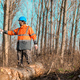 Forestry technician marking tree trunk for cutting in deforestation process - PhotoDune Item for Sale