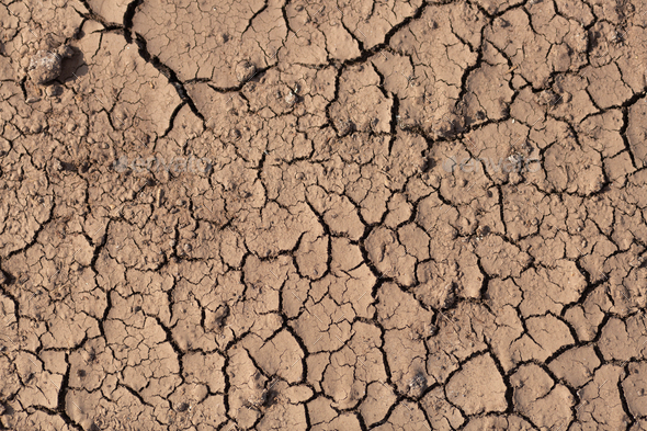 Dry cracked ground, drought - Stock Photo - Images