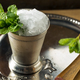 Frozen Boozy Bourbon Mint Julep - PhotoDune Item for Sale