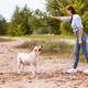 Woman giving a command to her obedient dog - PhotoDune Item for Sale