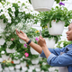 Comfortable work with smart technologies. Woman care and takes photos of flowers in greenhouse - PhotoDune Item for Sale
