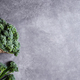 Bunch of Broccolini on Stone Background. - PhotoDune Item for Sale