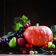 Thanksgiving still life, autumn harvest fruits and vegetables - PhotoDune Item for Sale