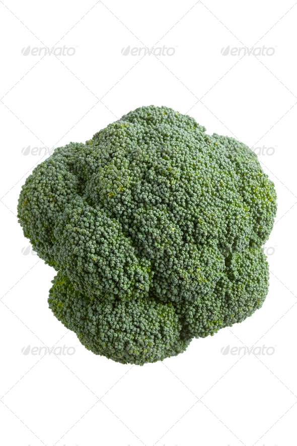 Fresh Broccoli seen from above - Stock Photo - Images