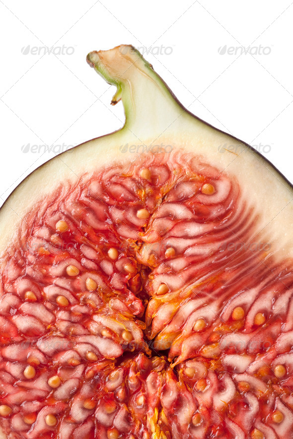 Half fresh fig close up - Stock Photo - Images