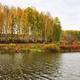 Beautiful autumn landscape yellow grass leaves - PhotoDune Item for Sale