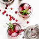 Cranberry cocktail with ice, rosemary and berries, bar tools, white background, top view - PhotoDune Item for Sale