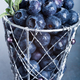 Freshly picked blueberries in metallic cup - PhotoDune Item for Sale