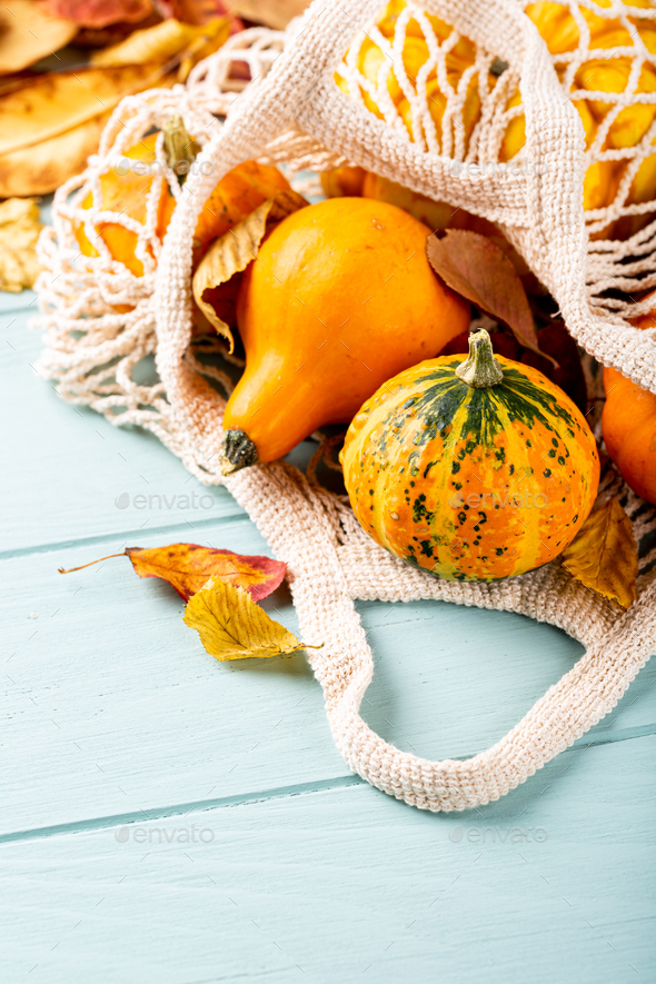 Autumn pumpkin thanksgiving background - Stock Photo - Images