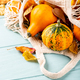Autumn pumpkin thanksgiving background - PhotoDune Item for Sale