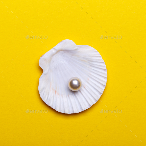 Sea shell with pearl - Stock Photo - Images