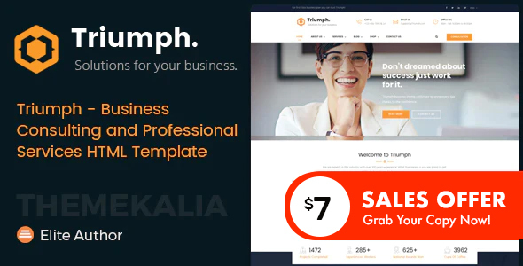 Triumph - Business Consulting and Professional Services HTML Template