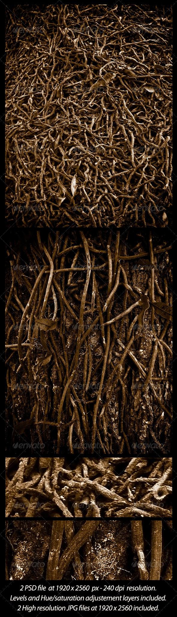 2 Roots Textures - Nature Textures
