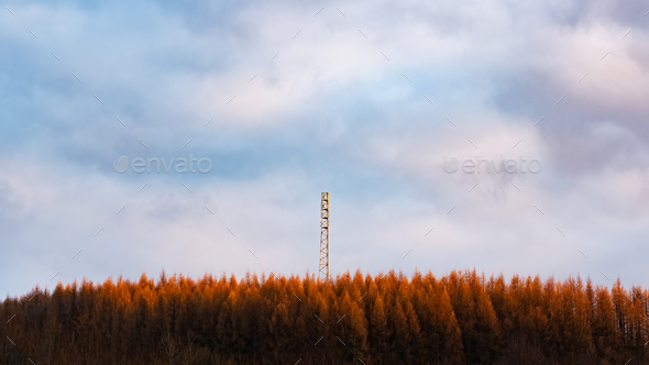New tower build on the hill in forest rady for3G 4G LTE Radio Mast in a Rural Location - Stock Photo - Images