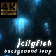 Jellyfish - VideoHive Item for Sale