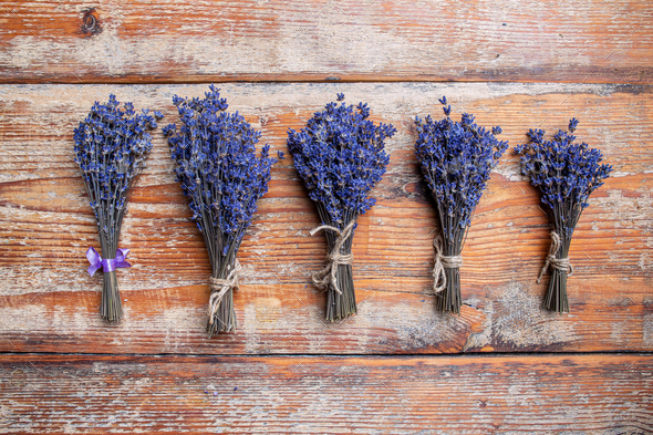 Bunches of lavender flowers - Stock Photo - Images