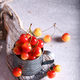 Fresh Organic Cherry - PhotoDune Item for Sale