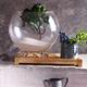 Interior Design with Lively Florarium - PhotoDune Item for Sale