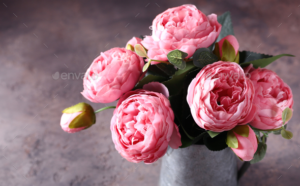 Pink Peonies - Stock Photo - Images
