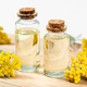 Helichrysum essential oil - PhotoDune Item for Sale