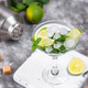 Martini cocktail with lime and mint - PhotoDune Item for Sale