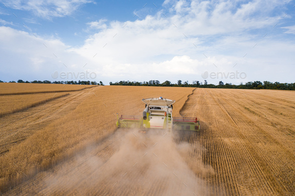 Aerial top view of combine harvester working on wheat field - Stock Photo - Images