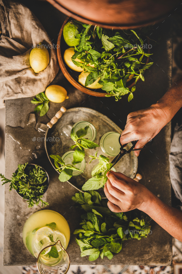 Woman decorating cold citrus lemonade with fresh mint leaves - Stock Photo - Images